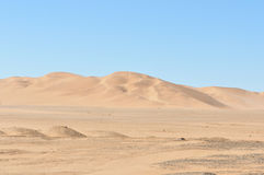 Dune 7 in the Namib desert Royalty Free Stock Photo