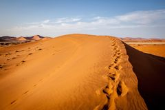 Dune in Namib Desert royalty free stock image