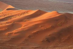 Dune 45, Namib Naukluft National Park, Namibia Royalty Free Stock Image