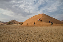 Dune 45 Namibia. A picture of the famous Dune 45 in Namibia Royalty Free Stock Photo