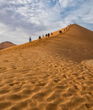 Dune 45 Namibia. A picture of the famous Dune 45 in Namibia Stock Photography