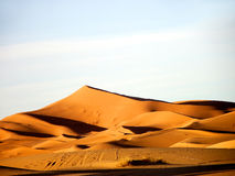 Dune nel Sahara Fotografia Stock Libera da Diritti
