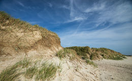 Dune in northern Germany Royalty Free Stock Photo
