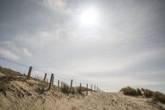 dune olandesi Fotografia Stock