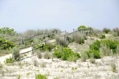 Dune Path Royalty Free Stock Photography