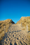 Dune Pathway 1 Royalty Free Stock Images