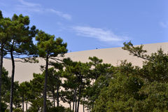Dune of Pilat in France Stock Images