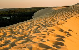 Dune of Pilat. The dune has been observed to move landward, slowly pushing the forest back to cover houses, roads and portions of the Atlantic Wall royalty free stock image