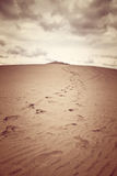 Dune of Pilat, the tallest sand dune in Europe Stock Photography
