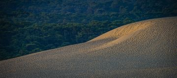 Dune of Pilate, France. the largest sandy desert in Europe stock image