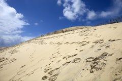 Dune of Pyla Stock Images