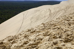 Dune of Pyla Royalty Free Stock Image