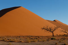 Dune 45. Red dunes on the road to Sossusvlei, Namibia Stock Photo