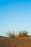 Dune and rippled sand Stock Photo