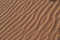 Dune ripples, Namiba. Dune ripples in Namib desert, showing some small animal and insect tracks, Namiba, Africa Stock Photography