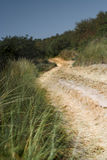 Dune road Royalty Free Stock Image