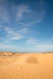 Dune rosse Immagine Stock