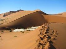 Dune rouge dans Deadvlei, Sossusvlei, Namibie Photo libre de droits