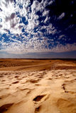 Dune sahara Royalty Free Stock Photography