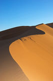 Dune in Sahara desert Royalty Free Stock Images