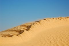 Dune in Sahara desert Royalty Free Stock Photo