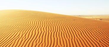 Dune in sand desert Royalty Free Stock Image