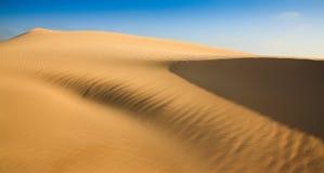 Dune Sand wing Stock Image