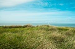 Dune Stock Photo