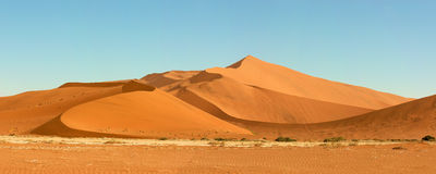 Dune sea of the Namib desert Royalty Free Stock Photography
