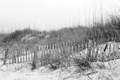 Dune Seclusion. A crude fence and rough terrain discourage tresspassers wanting access to the shore Royalty Free Stock Image