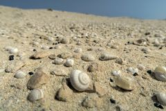 Dune from shells stock photography