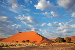 Dune and sky, Sossusvlei, Namibia. Landscape with desert grasses, large sand dune and sky with clouds, Sossusvlei, Namibia, southern Africa Royalty Free Stock Images