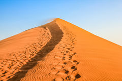 Dune 45: solitary and majestic in the Namib Desert Stock Photography