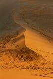 Dune 45. Sossusvlei  dune 45 namibia desert Stock Image