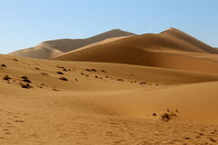 Dune 45 Royalty Free Stock Photography