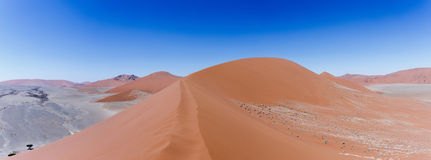 Dune 45 in sossusvlei Namibia, view from the top of a Dune 45 in. Panorama of Dune 45 in sossusvlei Namibia, view from the top of a dune, best place in namibia Stock Image