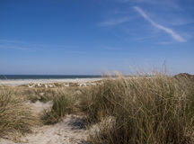 Dune, spiaggia e mare Fotografia Stock Libera da Diritti