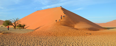 Dune 45. Is a star dune in the Sossusvlei area of the Namib Desert in Namibia Royalty Free Stock Photo