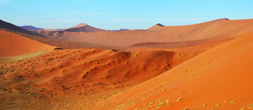 Dune 45. Is a star dune in the Sossusvlei area of the Namib Desert in Namibia Stock Images