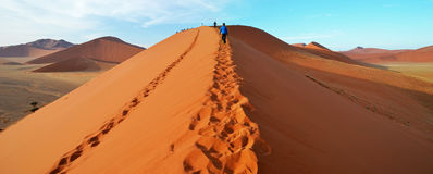 Dune 45. Is a star dune in the Sossusvlei area of the Namib Desert in Namibia Stock Photos