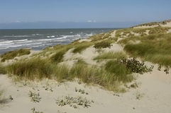 Dune of  Stella Plage in Nord Pas de Calais Royalty Free Stock Photos