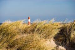 Dune sur la côte de mer baltique Images stock