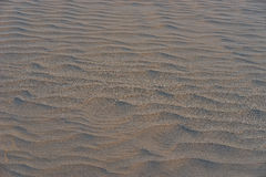 Dune with wavy structure in a wide desert next to beach in Gran Canaria Stock Images