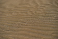 Dune with wavy structure in a wide desert next to beach in Gran Canaria Royalty Free Stock Photography