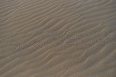 Dune with wavy structure in a wide desert next to beach in Gran Canaria Royalty Free Stock Photos