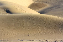 Dune with wonderful texture Stock Photography