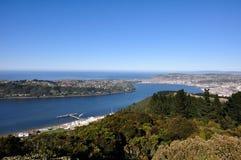 Dunedin Stockbild