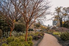 Dunedin Botanic Garden, South Island, New Zealand stock photography