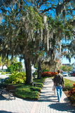 Dunedin, Florida royalty-vrije stock foto's