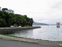 Dunedin, Otago-Schiereiland, Nieuw Zeeland - Februari vijfde, 2016: Wi stock foto